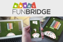 Fun bridge